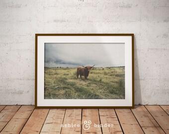 Yak Photography, Large Poster Print, Yak Nursery Decor, Yak Wall Art, Digital Wall Art, Digital Print, Digital Download, Instant Download