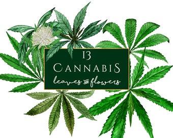 Cannabis Clipart, watercolor marijuana clipart, marihuana clip art, cannabis Sativa clipart, Watercolor Cannabis Sativa, hemp, weed clipart
