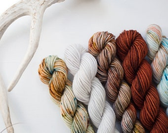 Headed Out West Mini Skein Set {DK Weight}