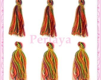 Set of 20 tassels multicolor REF2490 3cm