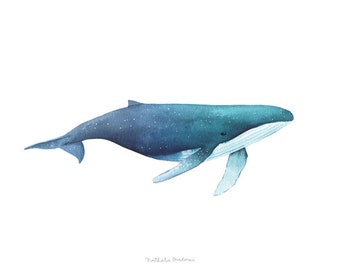 Whale print, watercolour giclee print, whale giclee art print, watercolor whale, Whale Illustration, giclee art print, giclee print