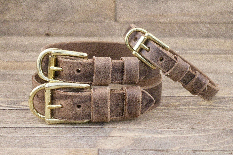 Crazy Dog Collars On Etsy