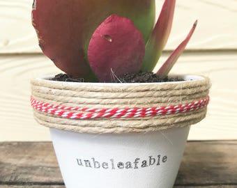 un-beleaf-able | funny pot plant | plant pun | unbelievable | teacher gift 11cm pot