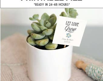 CUSTOMIZABLE Let Love Grow tags - ready in 24-48 hours