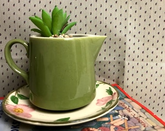 Green Pitcher Planter with Plate
