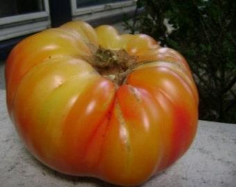 Mr Stripey Heirloom Tomato Seeds- 75+ Seeds