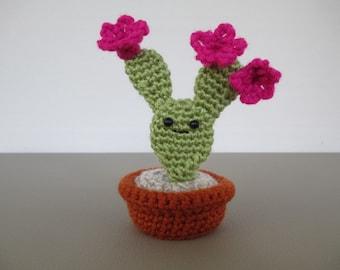 Bunny Ears Cactus crocheted