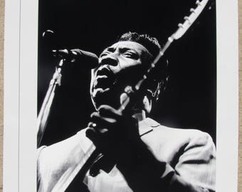 MUDDY WATERS BLUES poster 18 x 24 black & white glossy (photo by Raeburn Flerlage, Chicago, 1963) The King of Chicago Blues