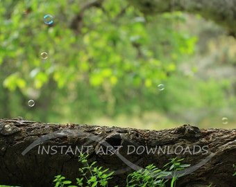 Enchanted Forest Backdrop Background 72 x 48  Digital Instant Art Downloads Grass Woodland Fairy Photography Printable Artwork Stock Large