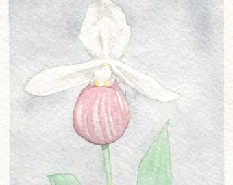 Pink Lady's Slipper Orchid Card