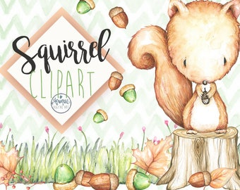 Squirrel Clipart Watercolor, Woodland nursery animals clipart, hand painted, floral, planner stickers, nursery decor, cute animals,leaves