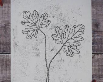 Botanical monotype print: Pelargonium leaves