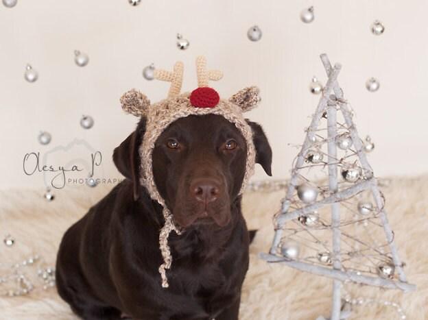 Download Crochet Pattern 039 Large Dog Reindeer Hat