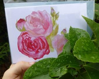 Pink Peonies Greeting Card (blank) + Baby Blue Envelope - Bel Blossom