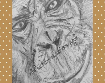ACEO Chimpanzee art trading card by Suffolk artist. Print of original pencil drawing. Wildlife collectable.Chimpanzee gift