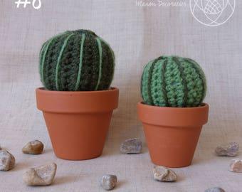 Crochet Cactus | #8