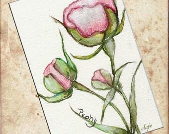 Peony Watercolor Art Print, Art print by Vintage Paris Market, Wall Art Print, Home Decor, Peony Flowers, Watercolor Art