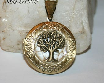 Tree of life picture with color eggshell (p)