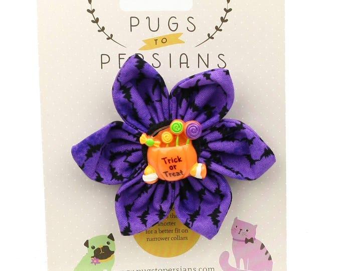 Halloween Dog Bow - Trick or Treat on Purple Bats - Flower - Collar Blossom - Medium Size