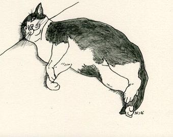 Cat original drawing - P018November2015