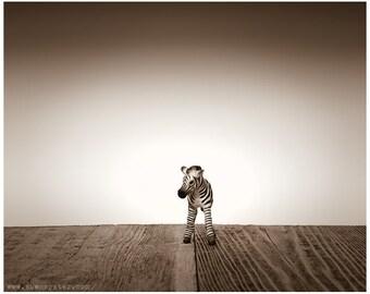 Nursery Decor, Baby animal art, Baby room ideas, Safari animals, Baby Zebra One Photo Print