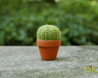S - Barrel Cactus