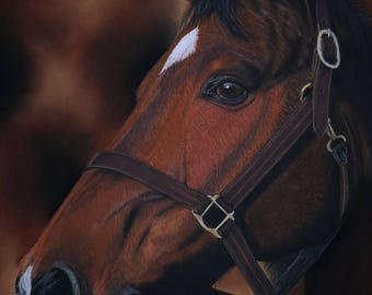 Chocolat : horse original art, animal original art, horse drawing, horse painting, animal drawing, horse wall art, horse lover gift idea