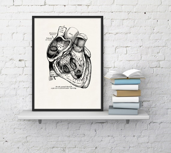 Wall art print Human Heart in black Science prints wall art Anatomy prints wall decor Gift, Love gift, giclee art SKA039WA4