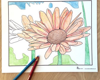 daisy coloring page, flower coloring sheet, instant download daisies, adult coloring pages, flower art