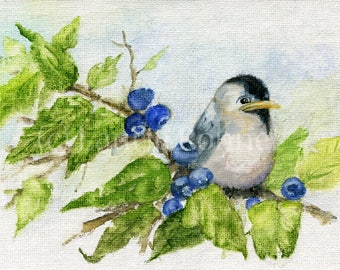 Woodland Bird Watercolor Nature Chickadee Blueberry Bush Original Art