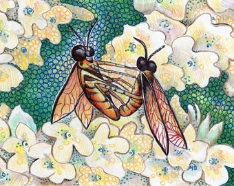 """Flies Pen and Ink Drawing - Color Pencil Art - Hydrangea Art - Insect Art - Fly Illustration - Insect Wall Art - 5x7"""" Wall Decor"""