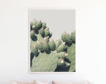 Prickly Pear Cactus Print, Cactus Printable, Cactus Photography Wall Art, Southwestern Home Decor, Cactus Art Download Boho Art Prints pp5cp