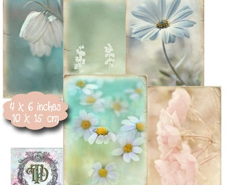 10 Soft Flower Background Tags