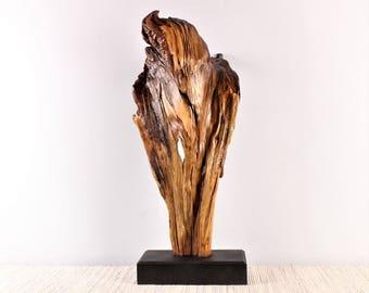Wood Sculpture, Forest Sculpture , Driftwood Sculpture : Sanctuary 18023