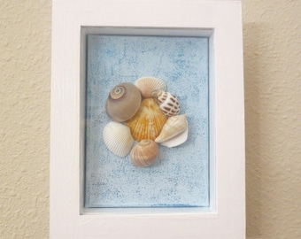 Shell Shadow box Picture