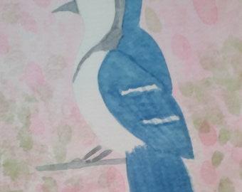 Blue Jay in the Hydrangeas