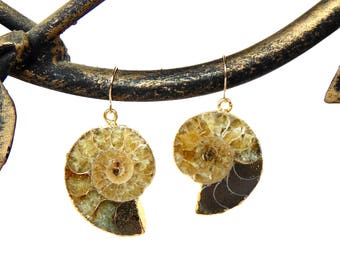 Gold Ammonite Earrings - Solid 14k and 24k Plated Fossil Earrings