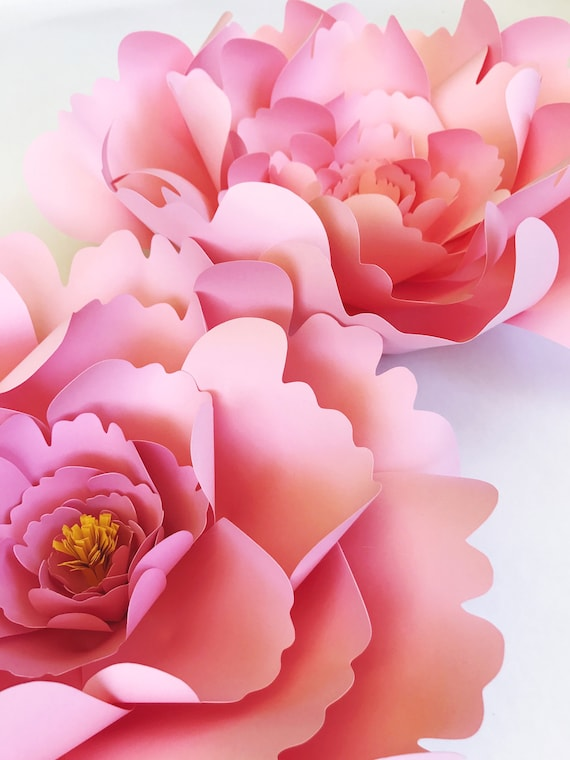 Large peony paper flower template diy instant download mightylinksfo