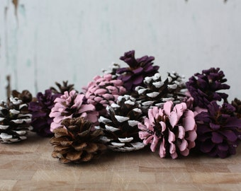 Natural Pine cones, Easter Decor, Spring Vase Fillers, Woodland Decor, Wreath Making, Floral Arrangements, Craft Cones, Rustic Decorations