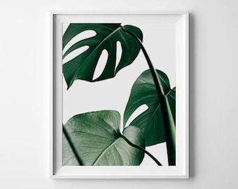 Monstera Leaf Print, Tropical Decor, Monstera Deliciosa, Monstera Printable, Monstera leaf, Monstera Print