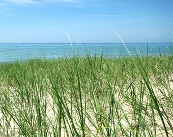 Lake Michigan print, Lake Michigan canvas, Michigan square print, Beach grass, beach photography, blue and green, summer photo
