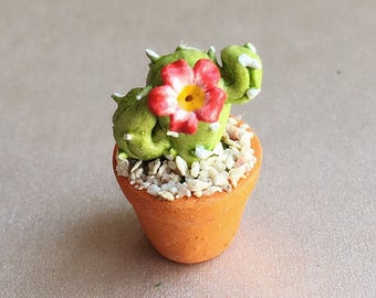 Miniature Cactus,Miniature Flower Pot,Miniature Flower,Dollhouse Garden,Dollhouse Flower,dollhouse flower pot,Dollhouse Cactus,Tree