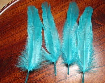 16 D GOOSE FEATHERS