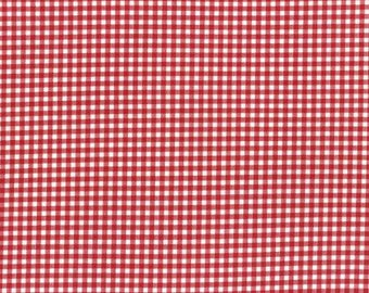 Durham by Lecien 2017  Checkered Print Cream and Red 31475-30
