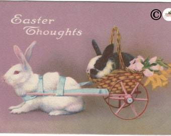 """Real-life White Easter Bunny and Black and White Easter Bunny in Basket Wagon """"Easter Thoughts""""  Easter Greeting Vintage Postcard"""