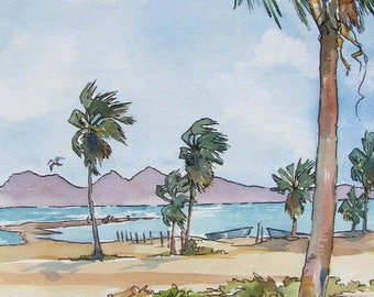La Playa The Beach - Palms, Islands, Sea, Sand and Surf.