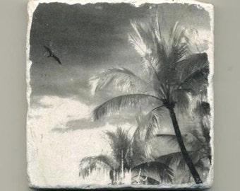 Bird and Palms in Puerto Vallarta, Mexico - Infrared Original Coaster