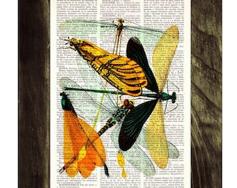 Dragonflies Dictionary Book Print nature art home and living Altered art on upcycled book pages BFL023