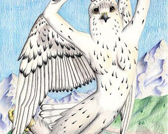 Ellowyn Gyrfalcon - Original  Colored Pencil