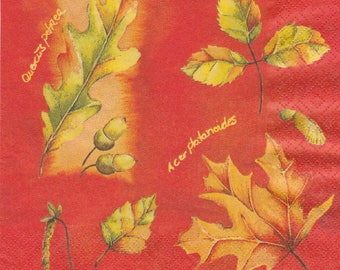 203 autumn leaves pattern 4 X 1 towel paper
